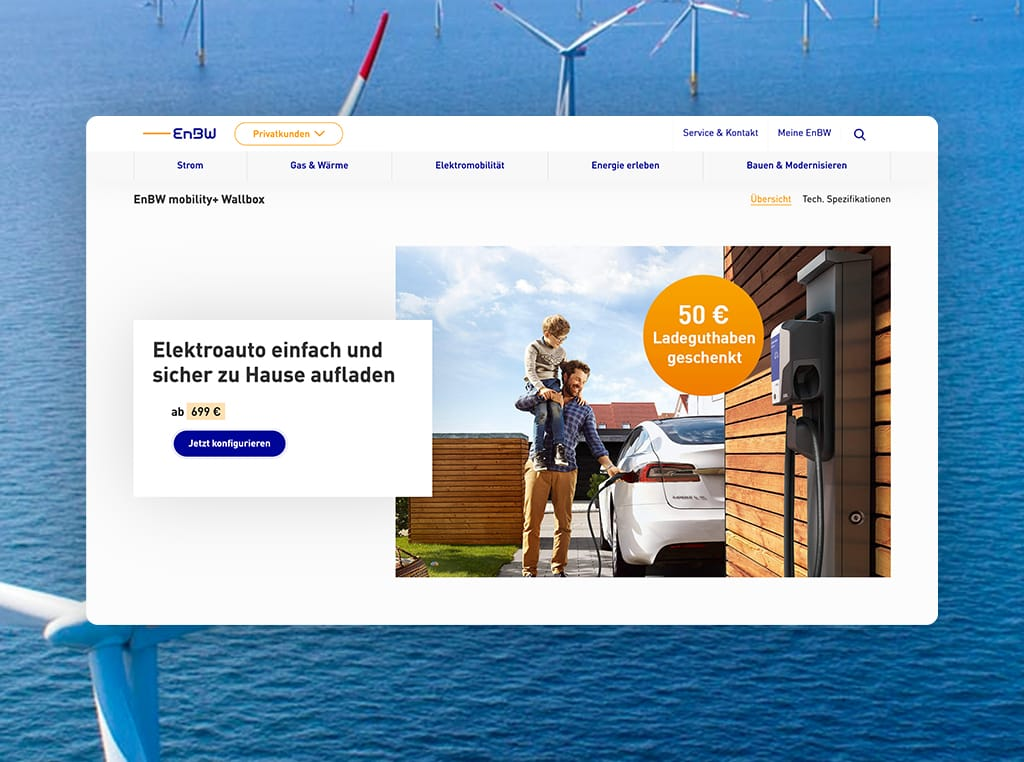 Screenshots of the EnBW Relaunch project